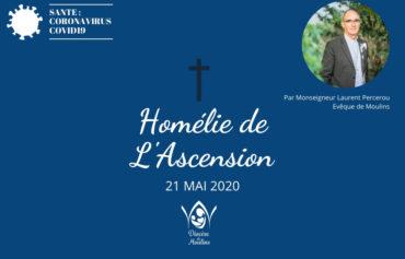 Homélie de L'Ascension – 21 mai 2020